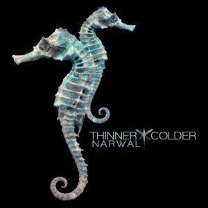 Thinner   Colder 歌手頭像