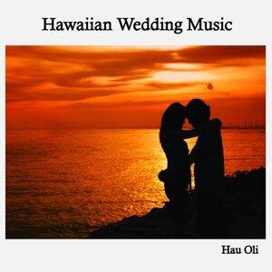 Hau Oli Hawaiian Wedding Music アーティスト写真