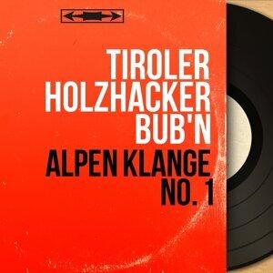 Tiroler Holzhacker Bub'n 歌手頭像
