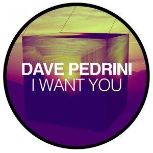 Dave Pedrini