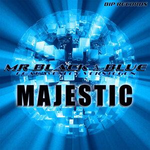 Mr Black & Blue Feat. Wesley Verstegen 歌手頭像