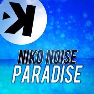 Niko Noise アーティスト写真
