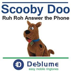 Robert Burton Deblume 歌手頭像