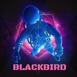 Blackbird 歌手頭像