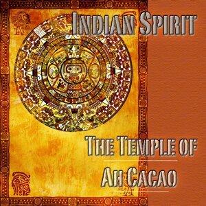 Indian Spirit 歌手頭像