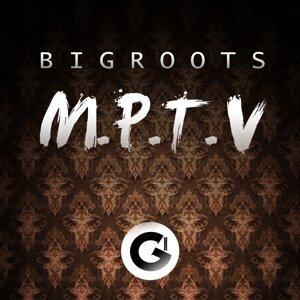 BigRoots 歌手頭像