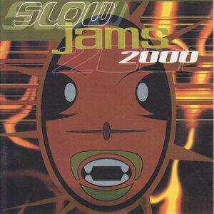 Slow Jams 2000 歌手頭像