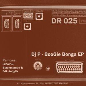 DJ P 歌手頭像