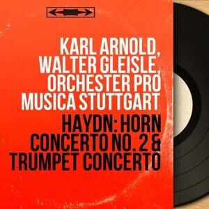 Karl Arnold, Walter Gleisle, Orchester Pro Musica Stuttgart 歌手頭像