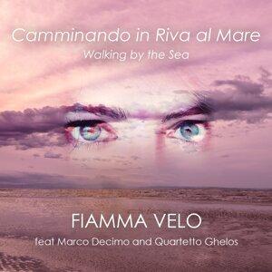 Fiamma Velo 歌手頭像