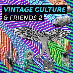 Vintage Culture 歌手頭像