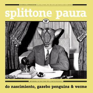 Splittone Paura アーティスト写真