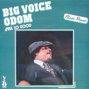 Big Voice Odom 歌手頭像