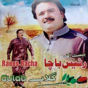 Raees Bacha 歌手頭像