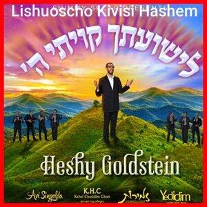 Heshy Goldstein 歌手頭像