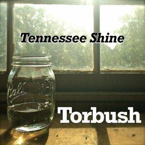 Torbush 歌手頭像