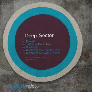 Deep Sector 歌手頭像