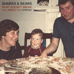 Sharks & Bears