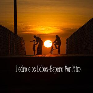 Pedro e os Lobos アーティスト写真