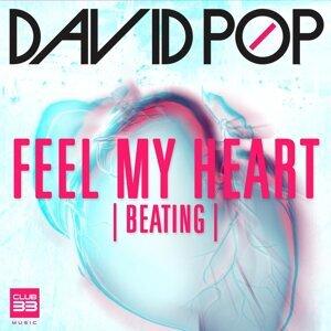 David Pop 歌手頭像