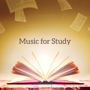 Studying Music Group