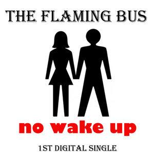 The Flaming Bus アーティスト写真