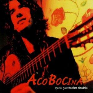 Aco Bocina アーティスト写真