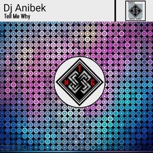 DJ Anibek アーティスト写真