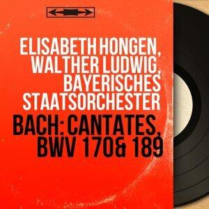 Elisabeth Höngen, Walther Ludwig, Bayerisches Staatsorchester 歌手頭像