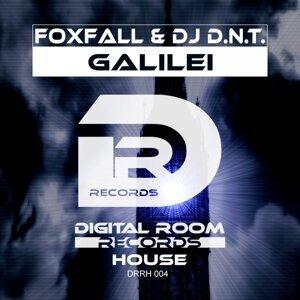 Foxfall, DJ D.N.T. アーティスト写真