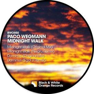 Paco Wegmann 歌手頭像