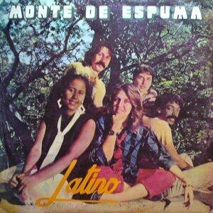 Monte de Espuma アーティスト写真