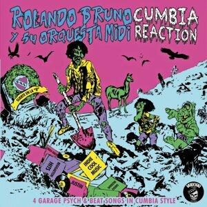Rolando Bruno Y Su Orquesta Midi 歌手頭像
