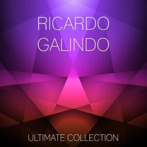 Ricardo Galindo, Erika Halliday 歌手頭像