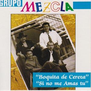 Grupo Mezcla アーティスト写真