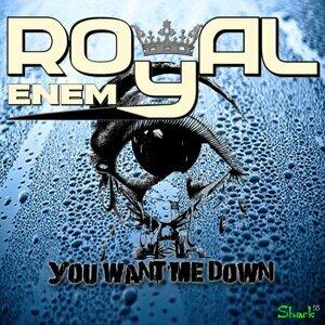 Royal Enemy 歌手頭像