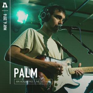 Palm 歌手頭像