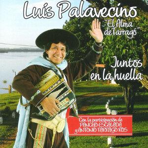 Luis Palavecino 歌手頭像