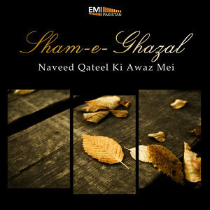 Naveed Qateel 歌手頭像