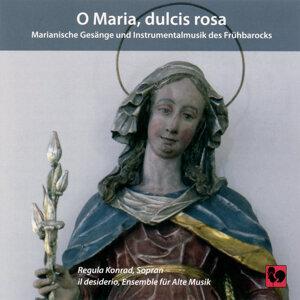 Regula Konrad & Il desiderio Ensemble 歌手頭像