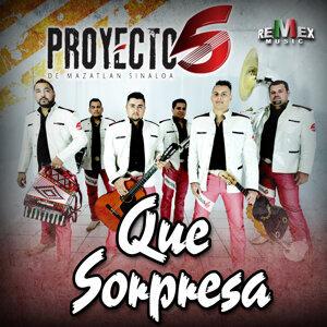 Proyecto 5 歌手頭像