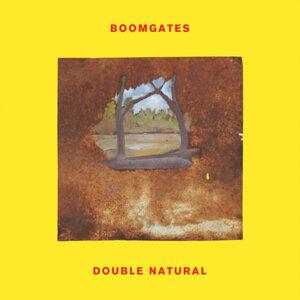 Boomgates 歌手頭像
