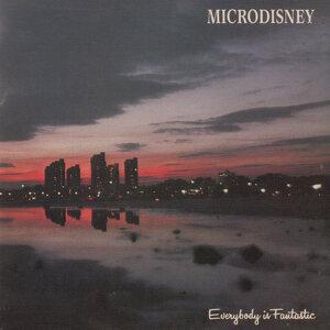 Microdisney アーティスト写真