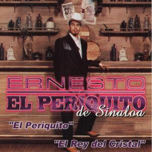 Ernesto El Periquito de Sinaloa 歌手頭像