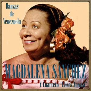 Magdalena Sánchez Y Cuarteto Ulises Acosta 歌手頭像