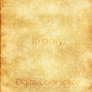 Digital Color Space