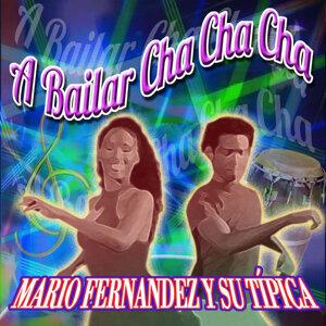 Mario Fernandez y su Tipica アーティスト写真
