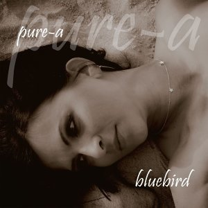 pure-a 歌手頭像
