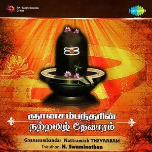 Thiruthani N. Swaminathan アーティスト写真