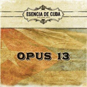Opus 13 歌手頭像